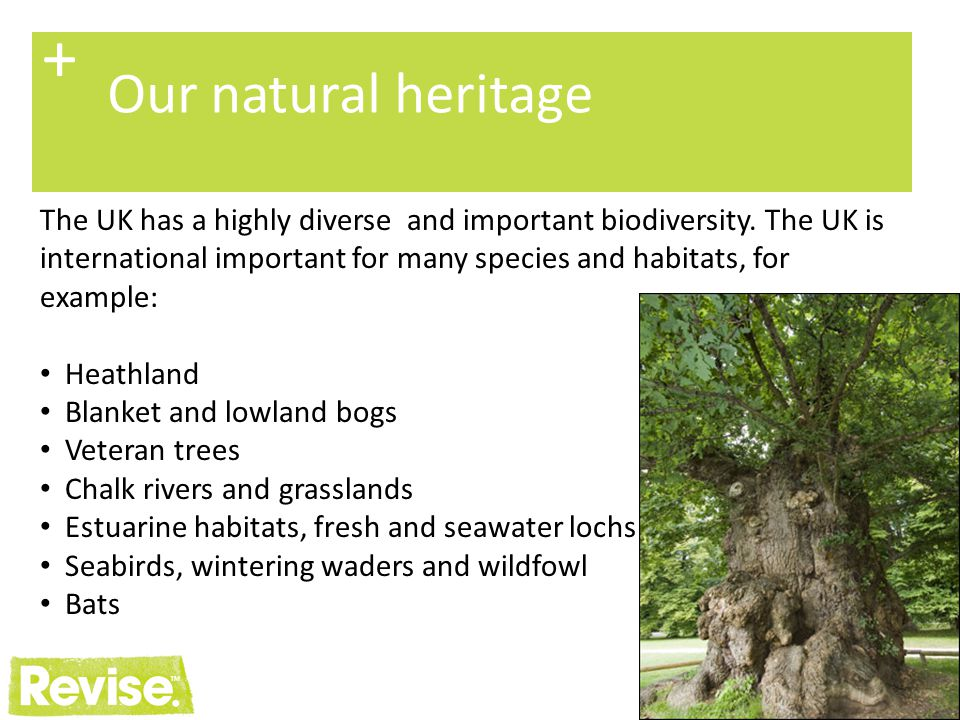 + Our natural heritage.
