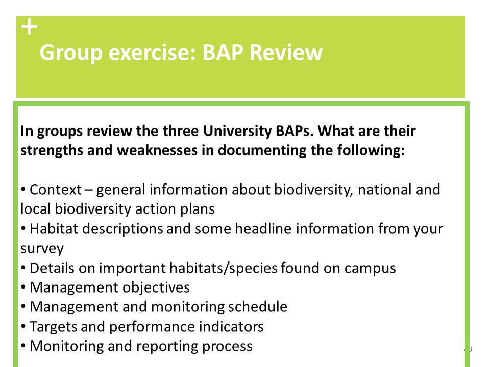 + Group exercise: BAP Review
