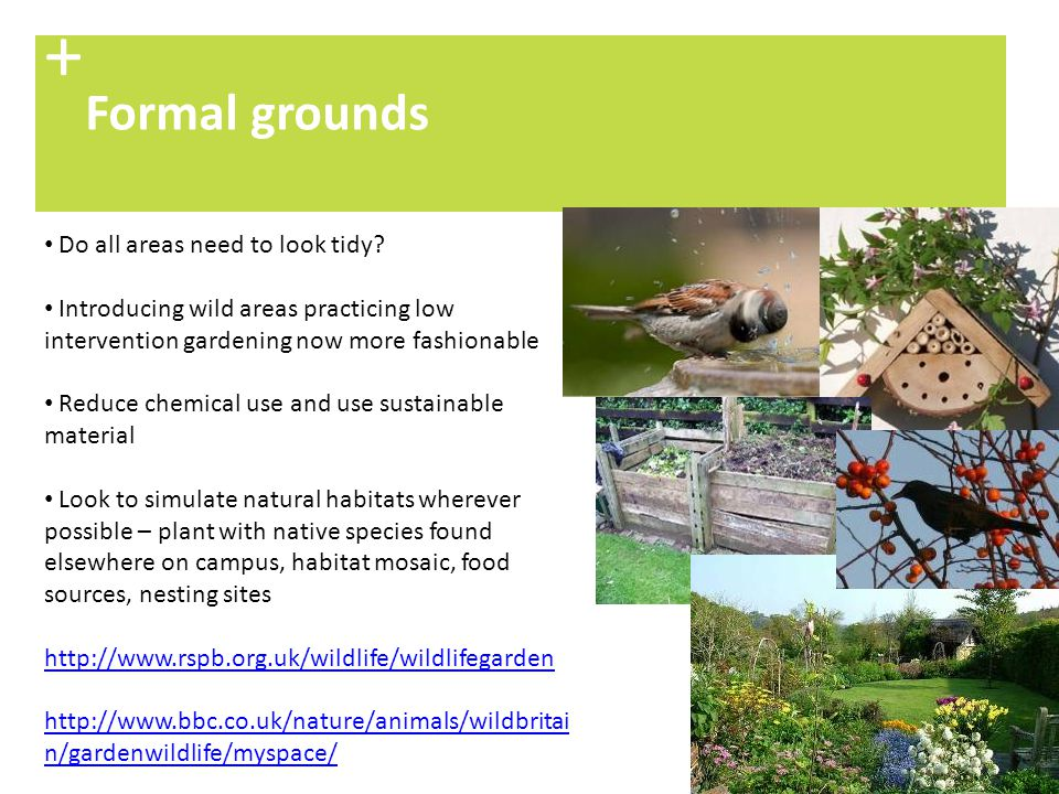 + Formal grounds Do all areas need to look tidy