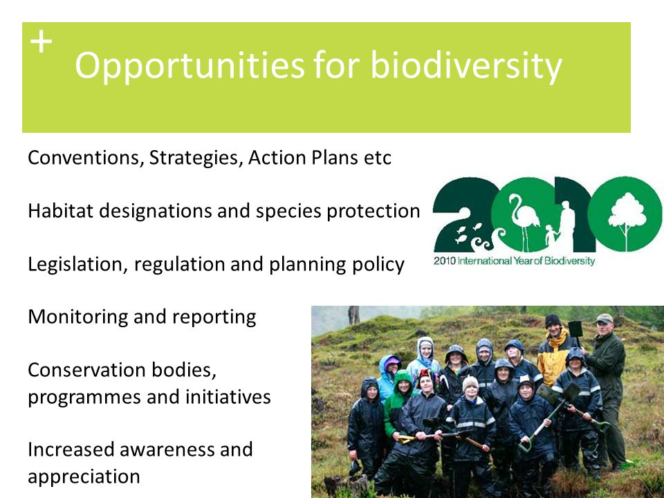 + Opportunities for biodiversity