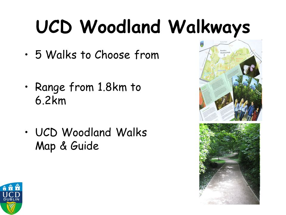 UCD Woodland Walkways 5 Walks to Choose from Range from 1.8km to 6.2km