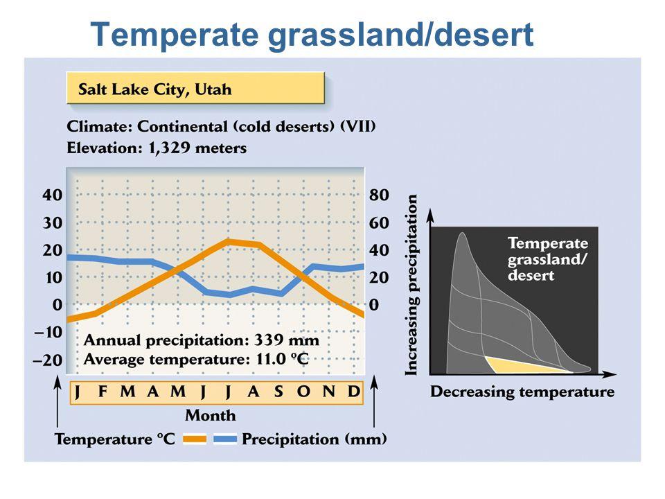 Temperate grassland/desert