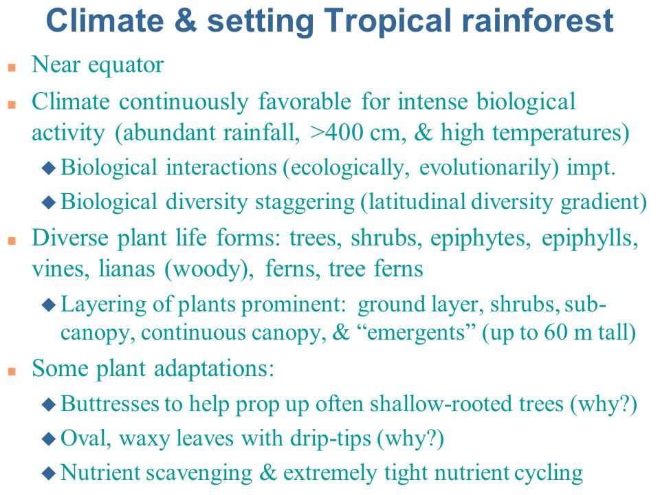 Climate & setting Tropical rainforest