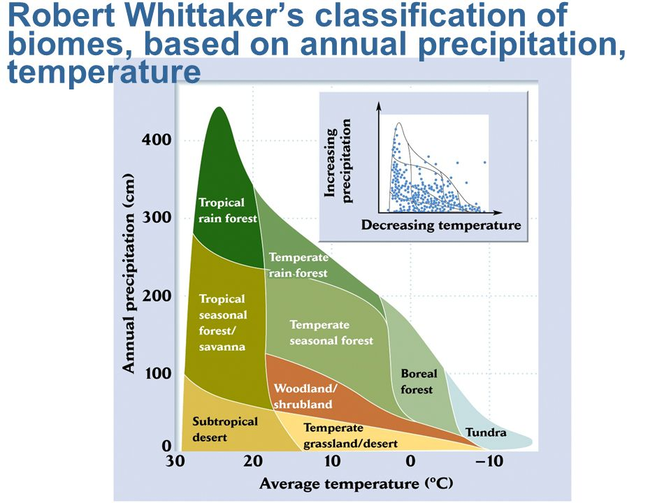Robert Whittaker's classification of biomes, based on annual precipitation, temperature