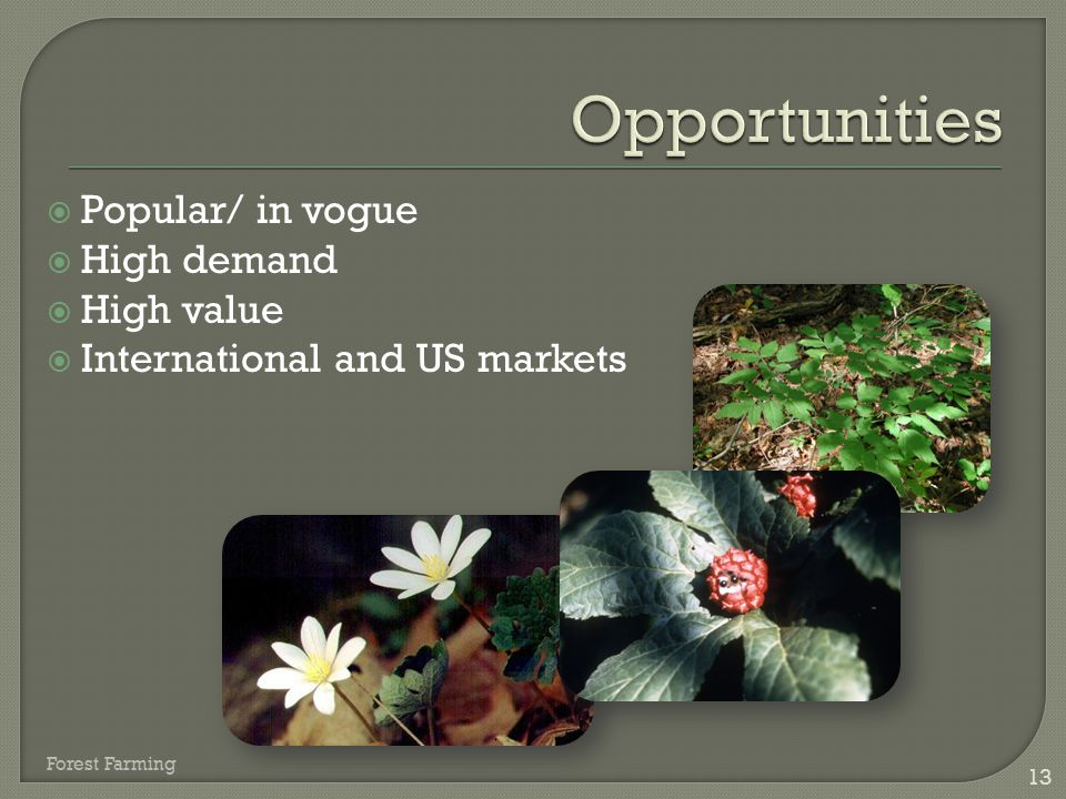 Opportunities Popular/ in vogue High demand High value