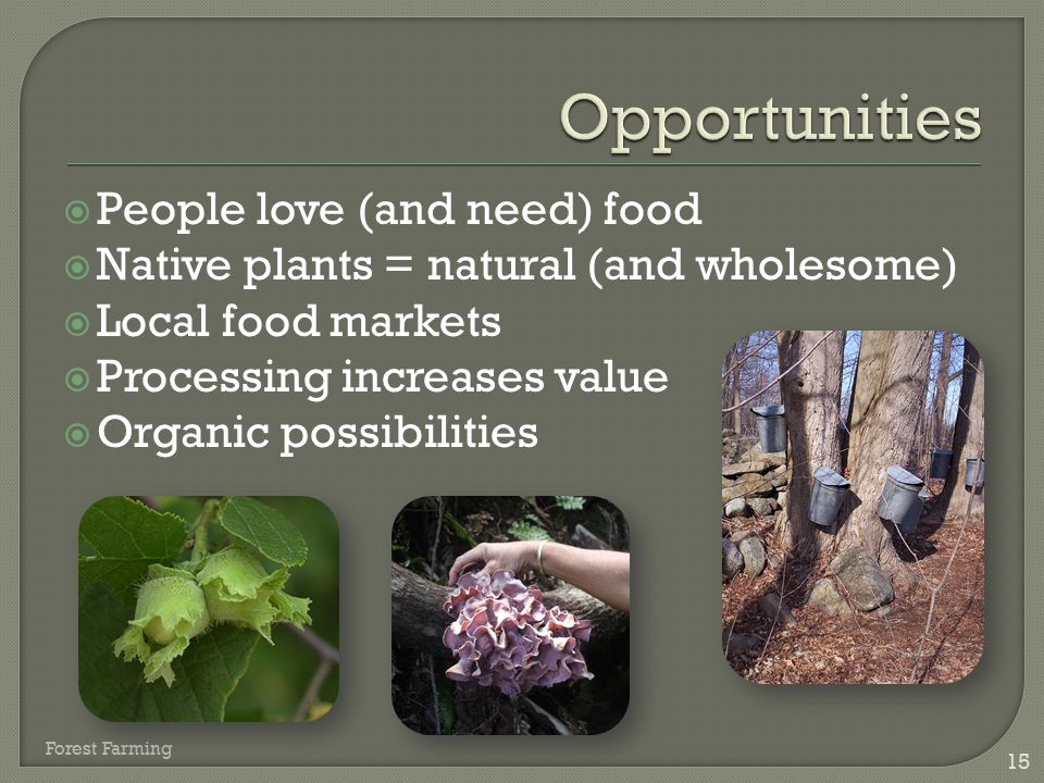 Opportunities People love (and need) food