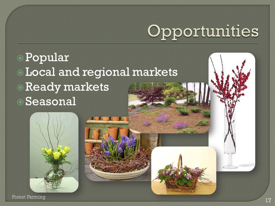 Opportunities Popular Local and regional markets Ready markets