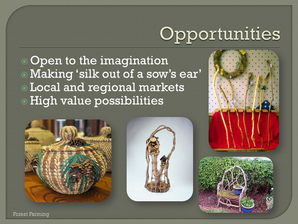 Opportunities Open to the imagination Making 'silk out of a sow's ear'