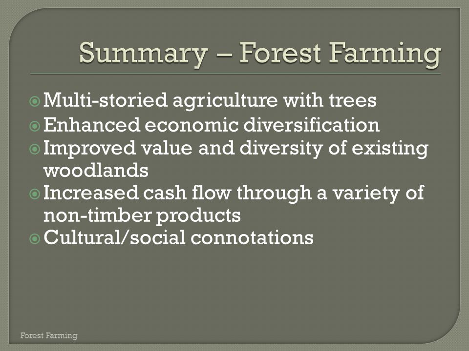 Summary – Forest Farming