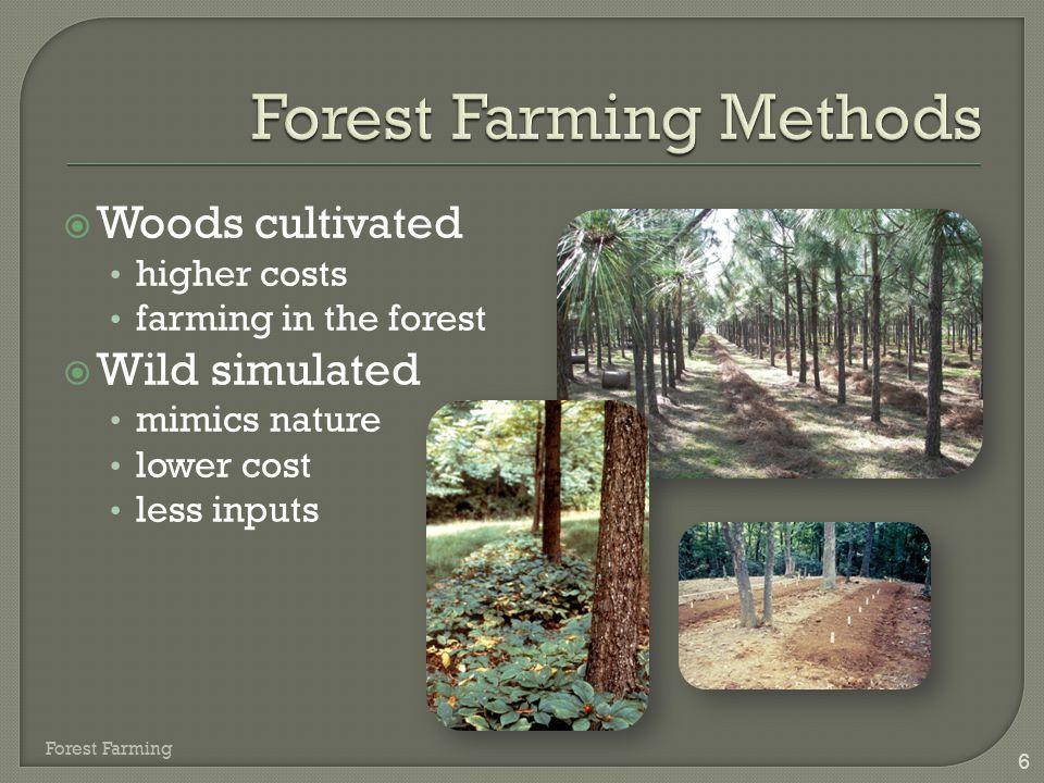 Forest Farming Methods