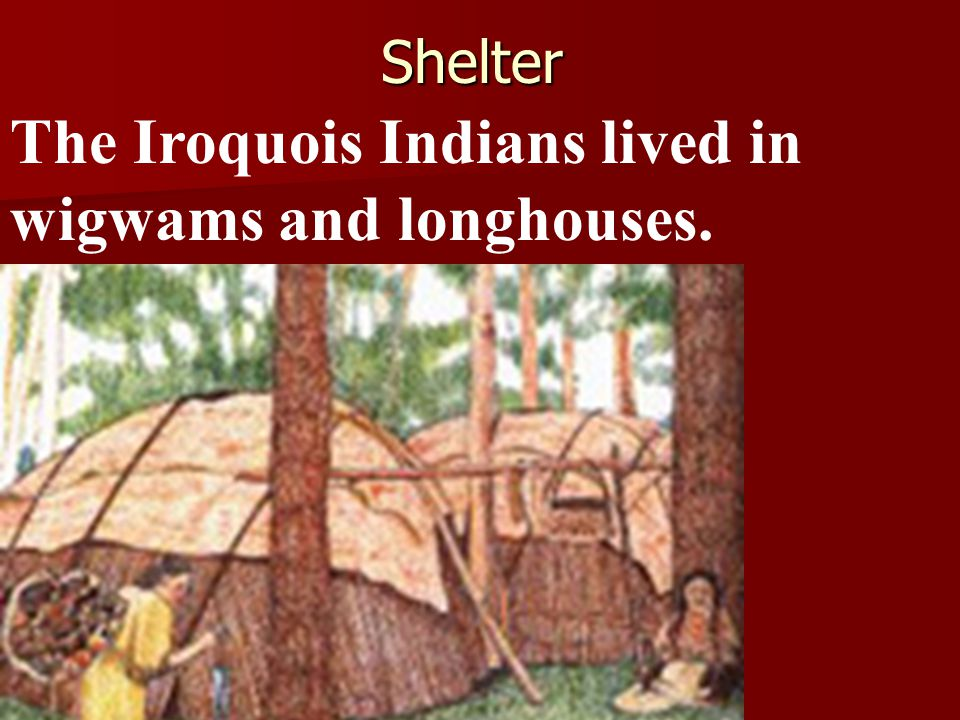 The Iroquois Indians lived in wigwams and longhouses.