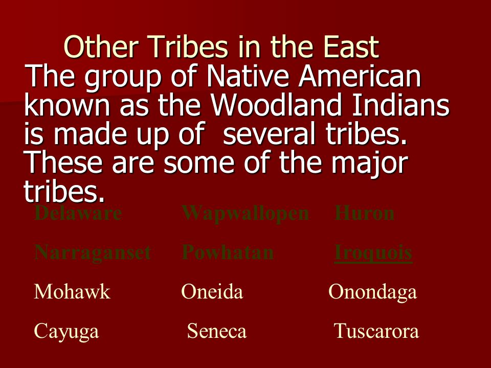 Other Tribes in the East
