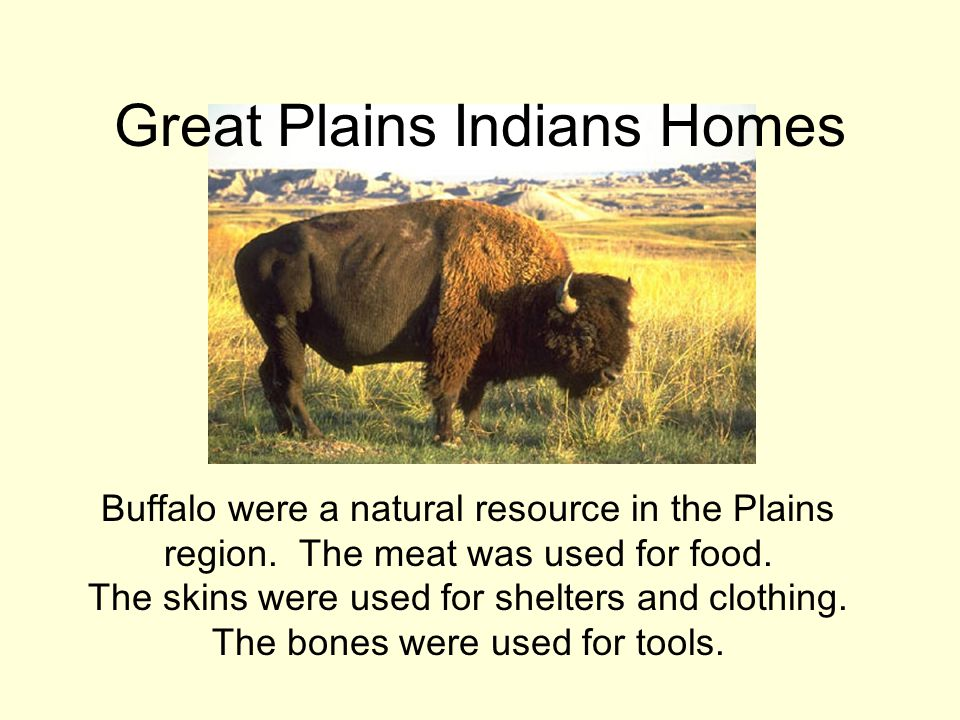 Native American Tribes - ppt video online download