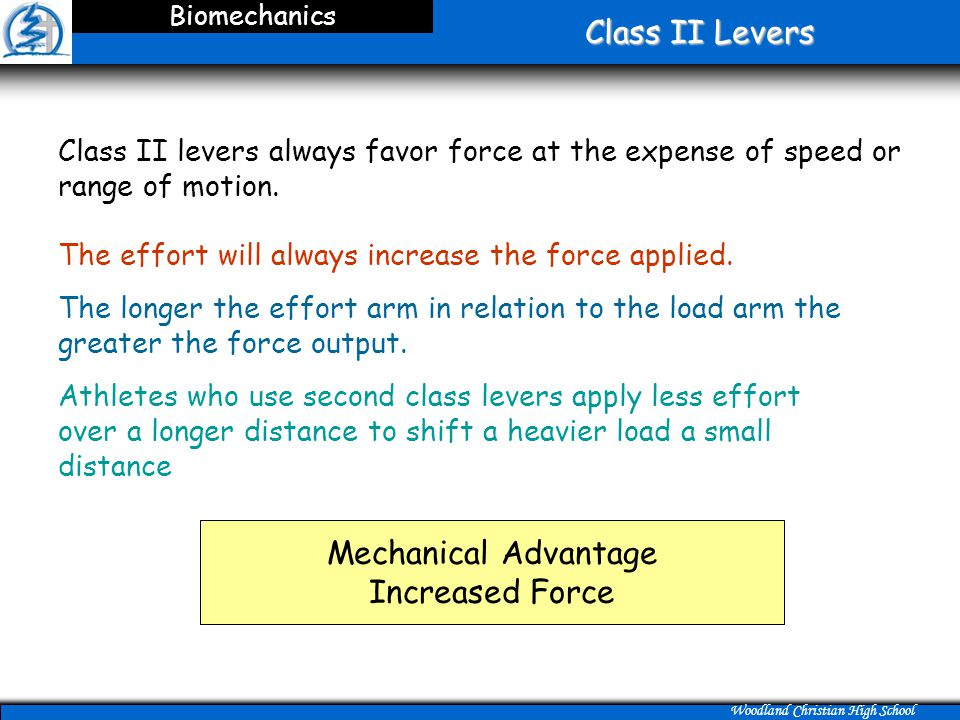 Class II Levers Mechanical Advantage Increased Force