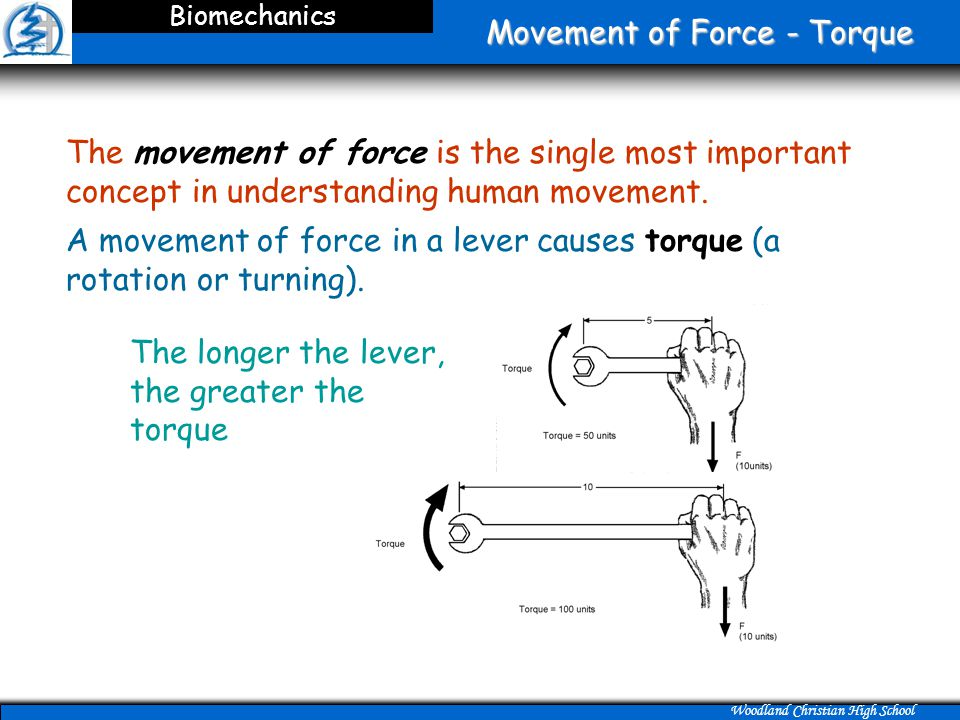 Movement of Force - Torque