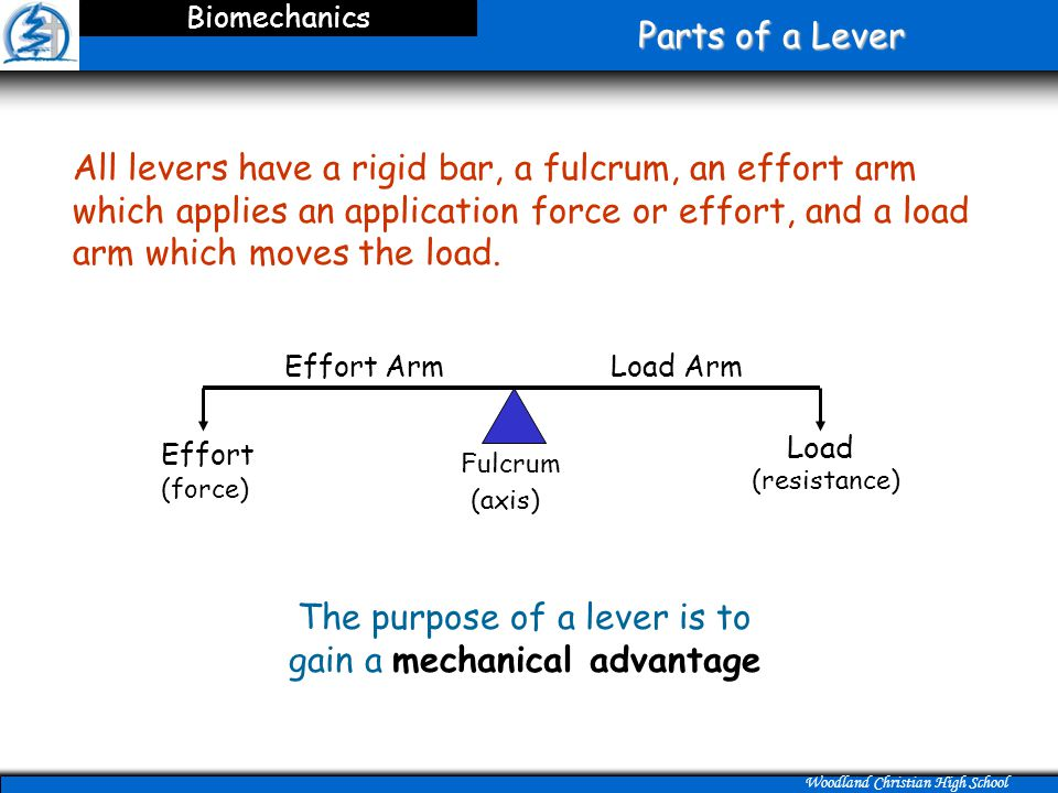 The purpose of a lever is to gain a mechanical advantage