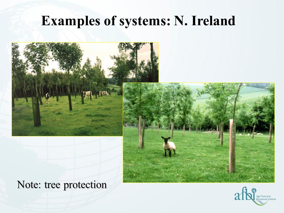 Examples of systems: N. Ireland