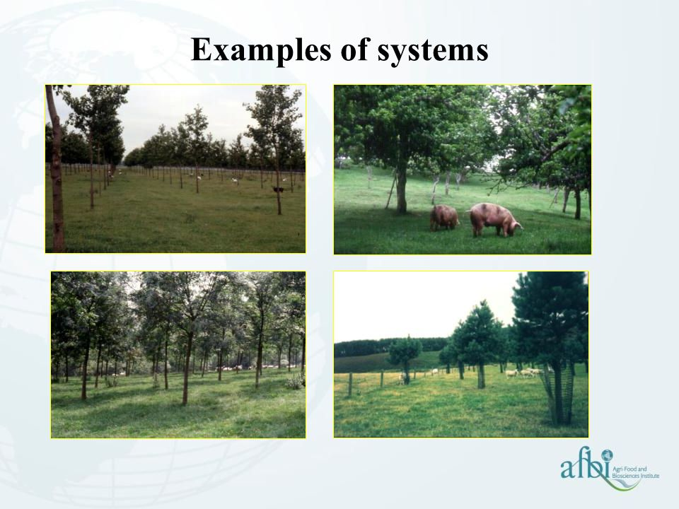 Examples of systems