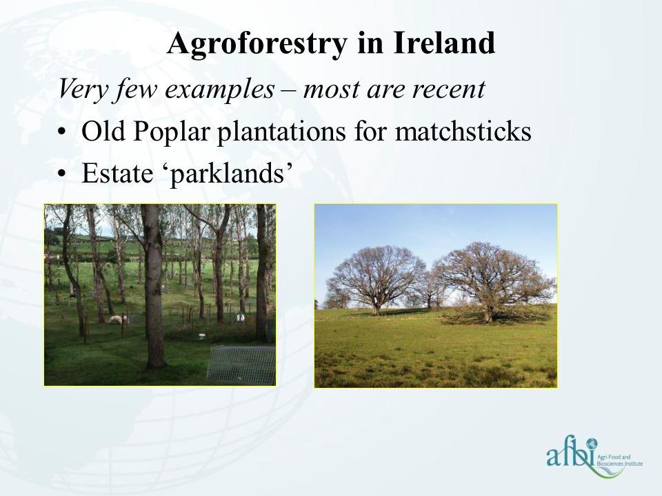 Agroforestry in Ireland