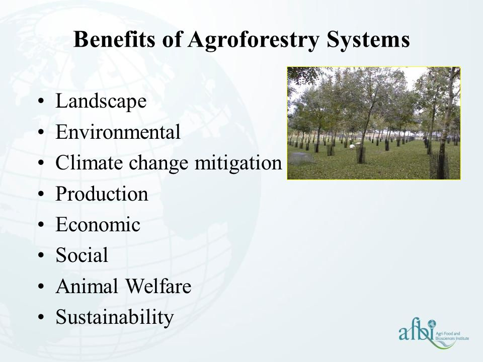 Benefits of Agroforestry Systems