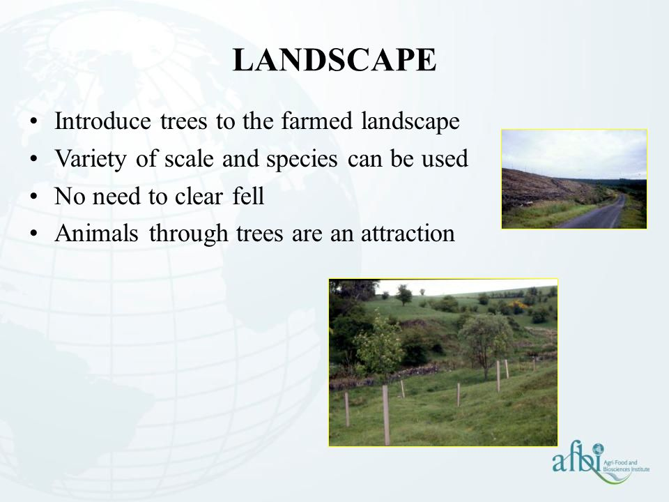 LANDSCAPE Introduce trees to the farmed landscape