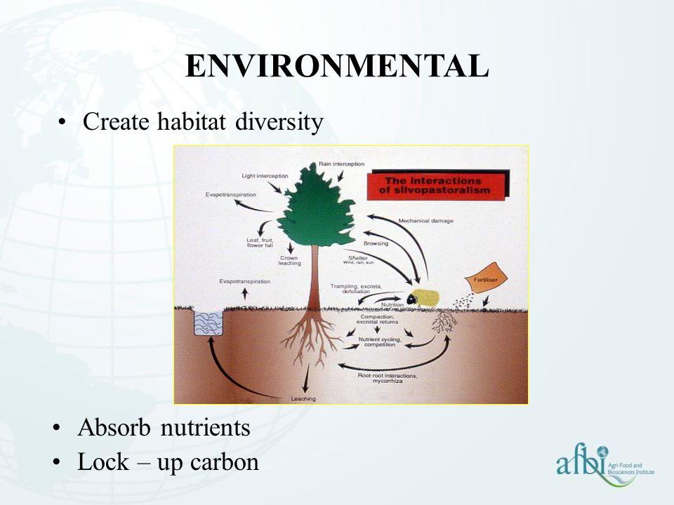 ENVIRONMENTAL Create habitat diversity Absorb nutrients