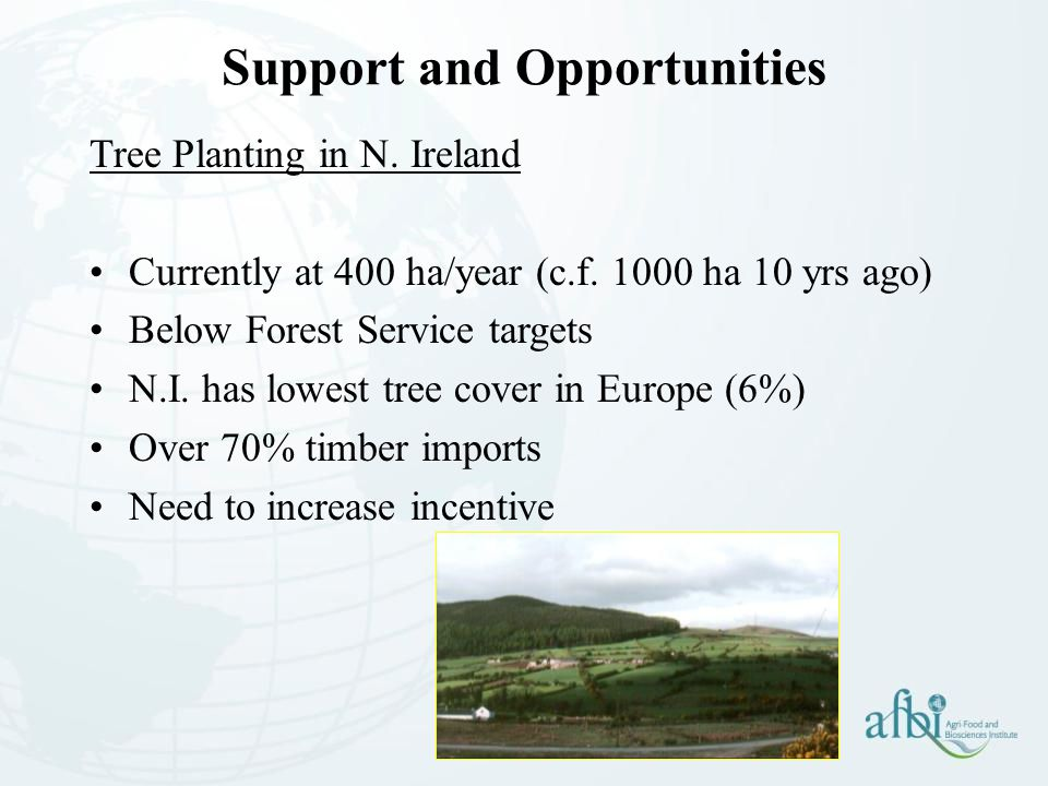 Support and Opportunities