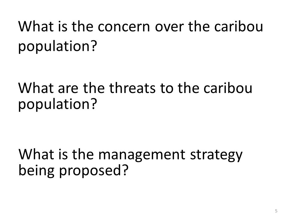 What is the concern over the caribou population