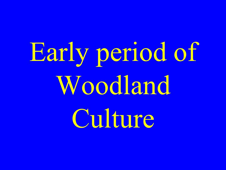 Early period of Woodland Culture