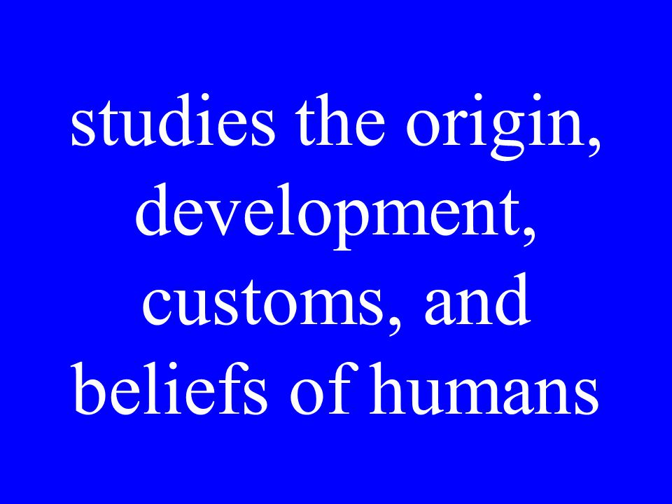 studies the origin, development, customs, and beliefs of humans