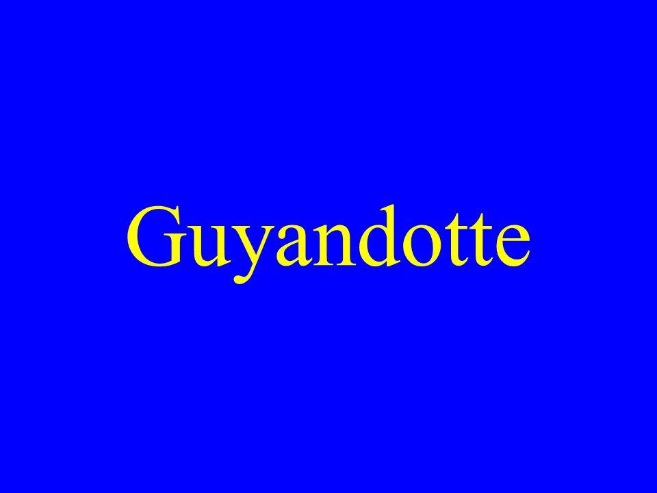 Guyandotte