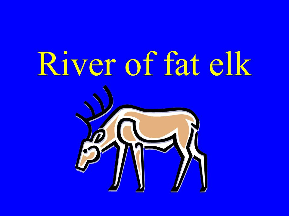 River of fat elk