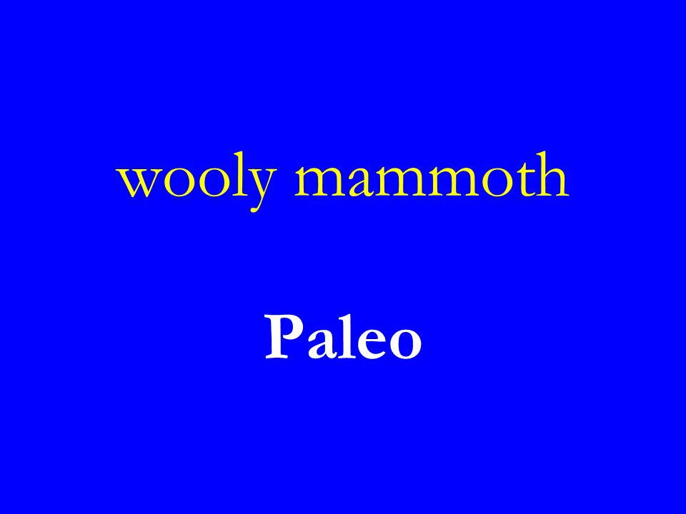 wooly mammoth Paleo
