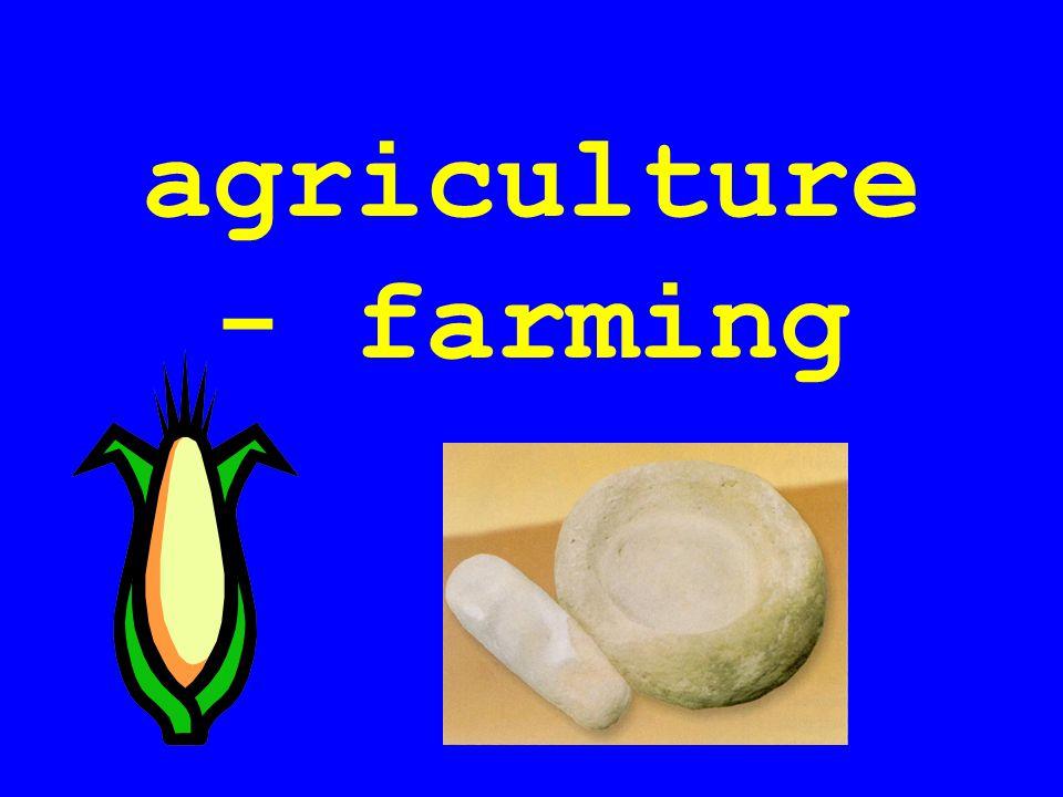 agriculture - farming