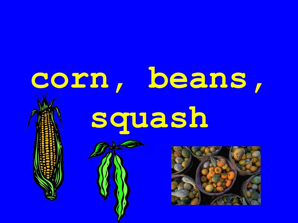 corn, beans, squash