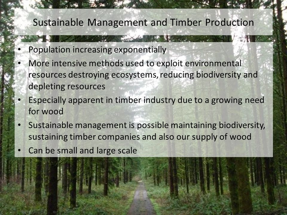 Sustainable Management and Timber Production