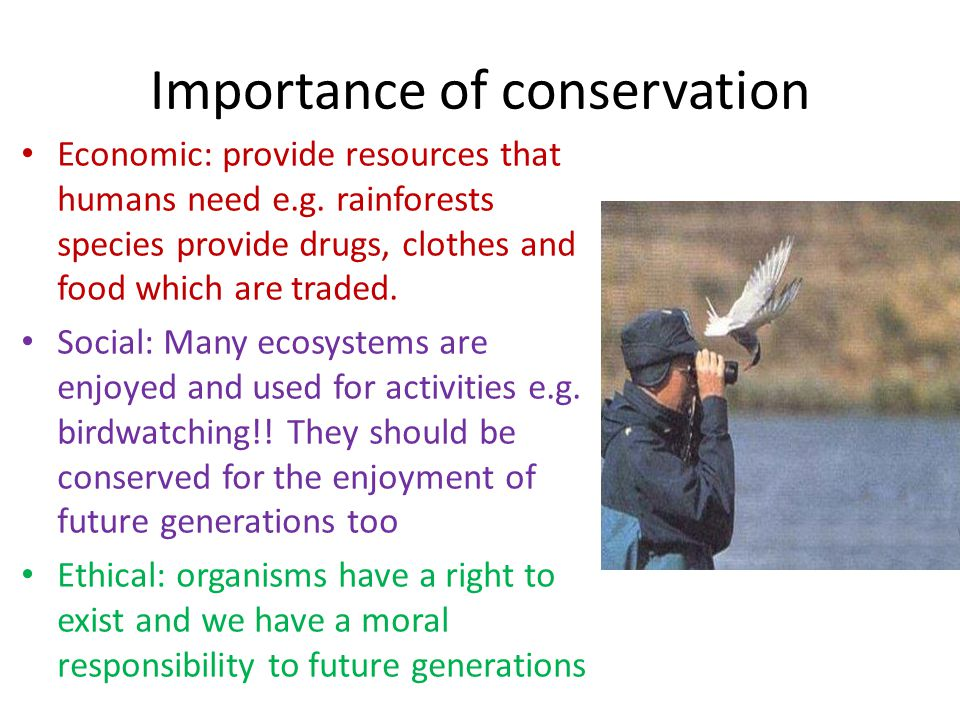 Importance of conservation