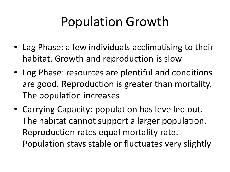 Population Growth Lag Phase: a few individuals acclimatising to their habitat. Growth and reproduction is slow.