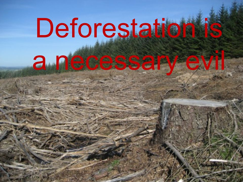 Deforestation is a necessary evil Deforestation is a necessary evil
