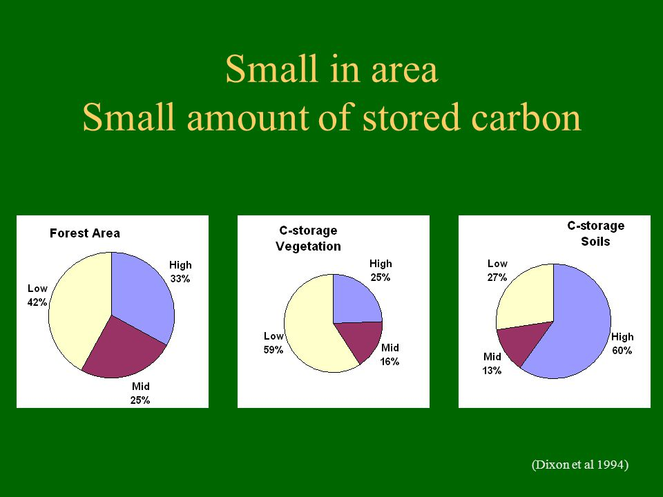 Small in area Small amount of stored carbon