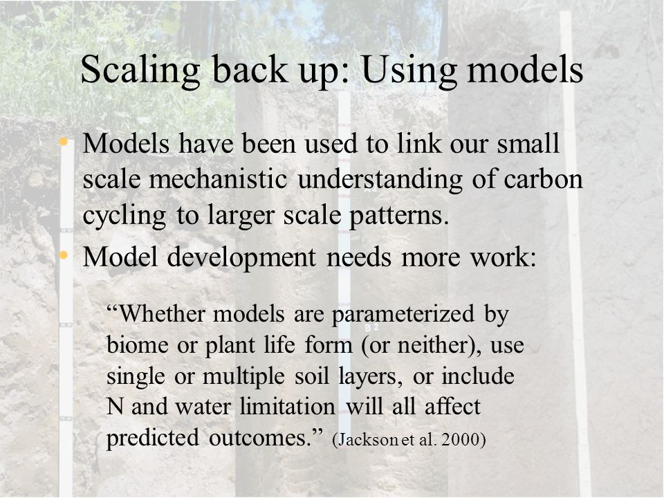Scaling back up: Using models