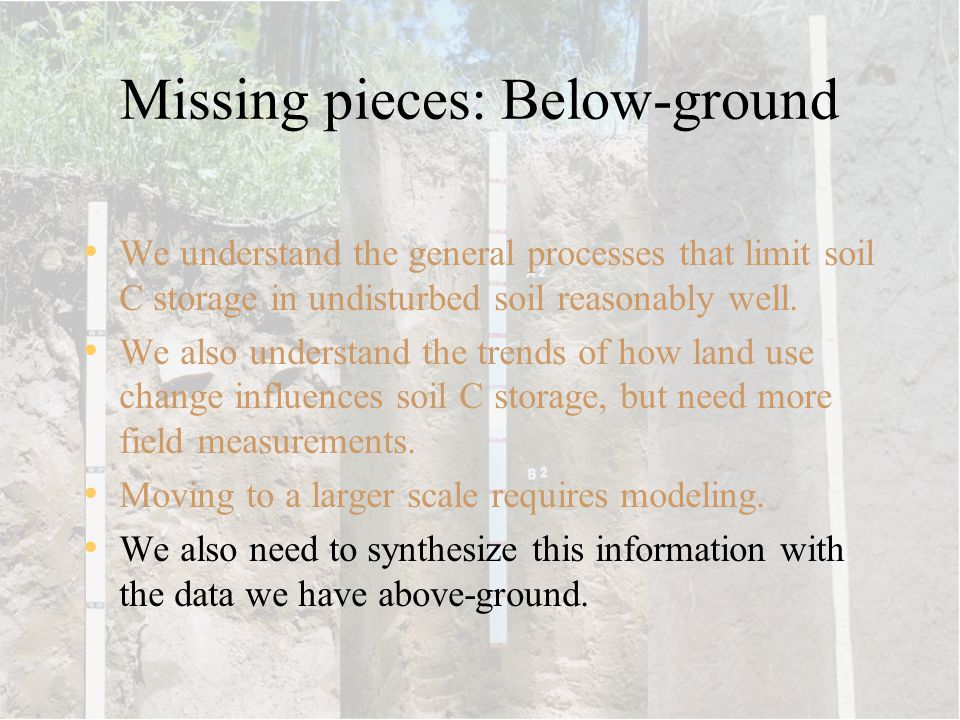 Missing pieces: Below-ground