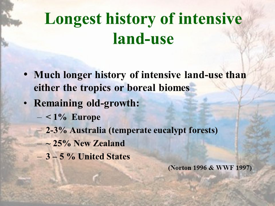 Longest history of intensive land-use