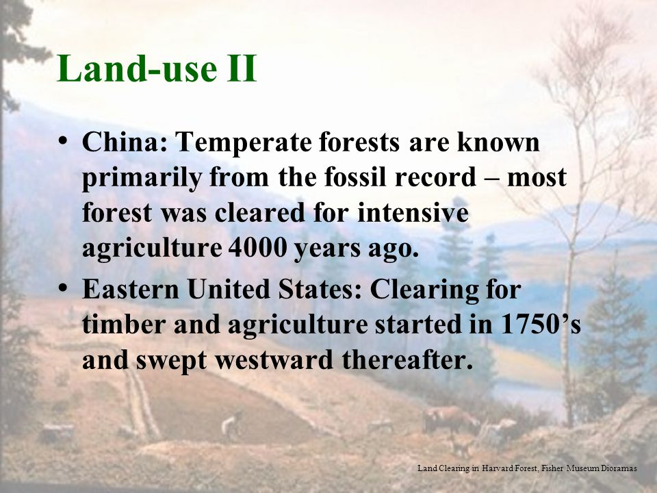 Land-use II China: Temperate forests are known primarily from the fossil record – most forest was cleared for intensive agriculture 4000 years ago.