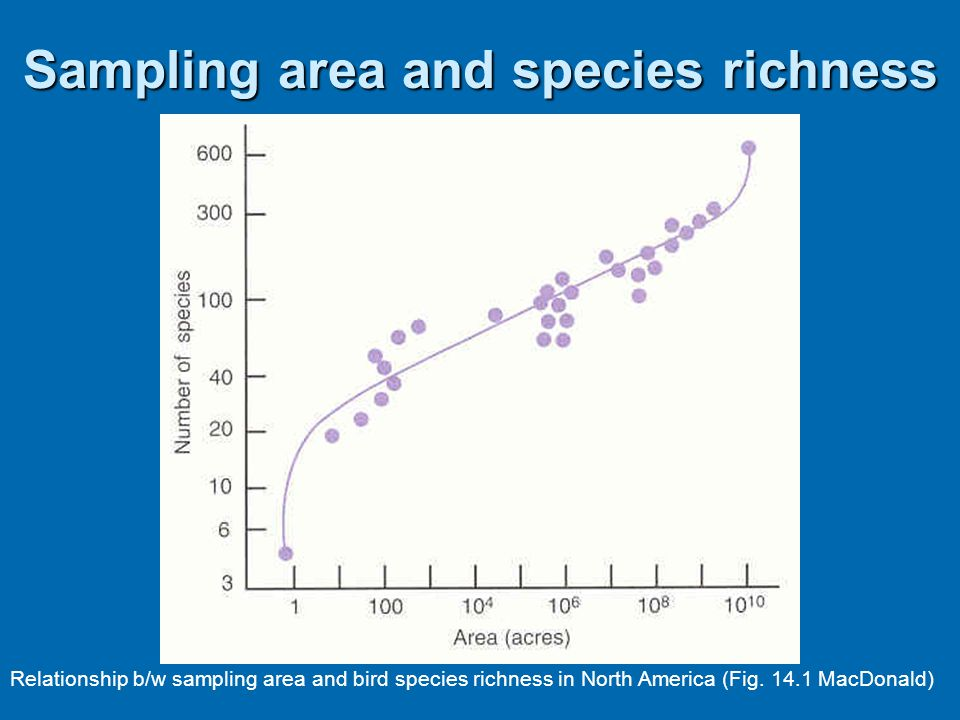 Sampling area and species richness
