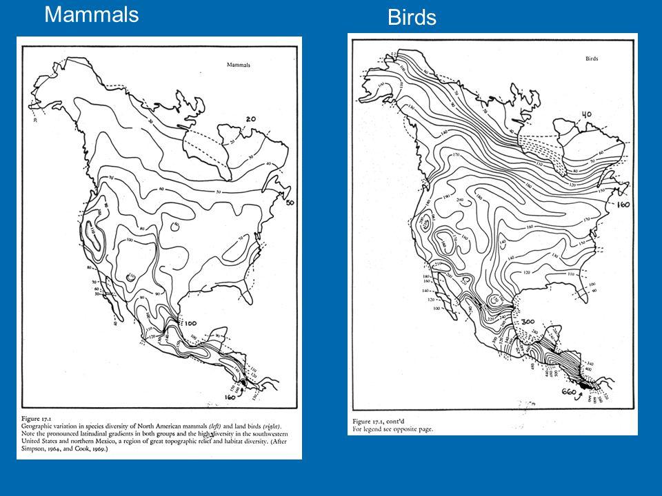 Mammals Birds