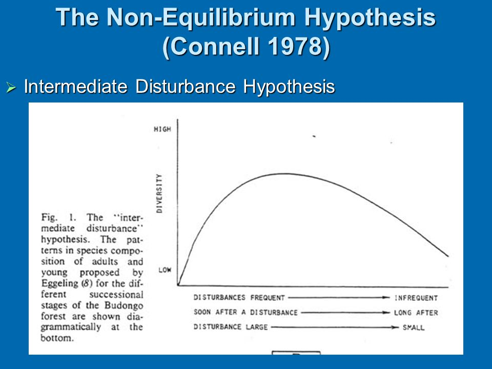 The Non-Equilibrium Hypothesis (Connell 1978)