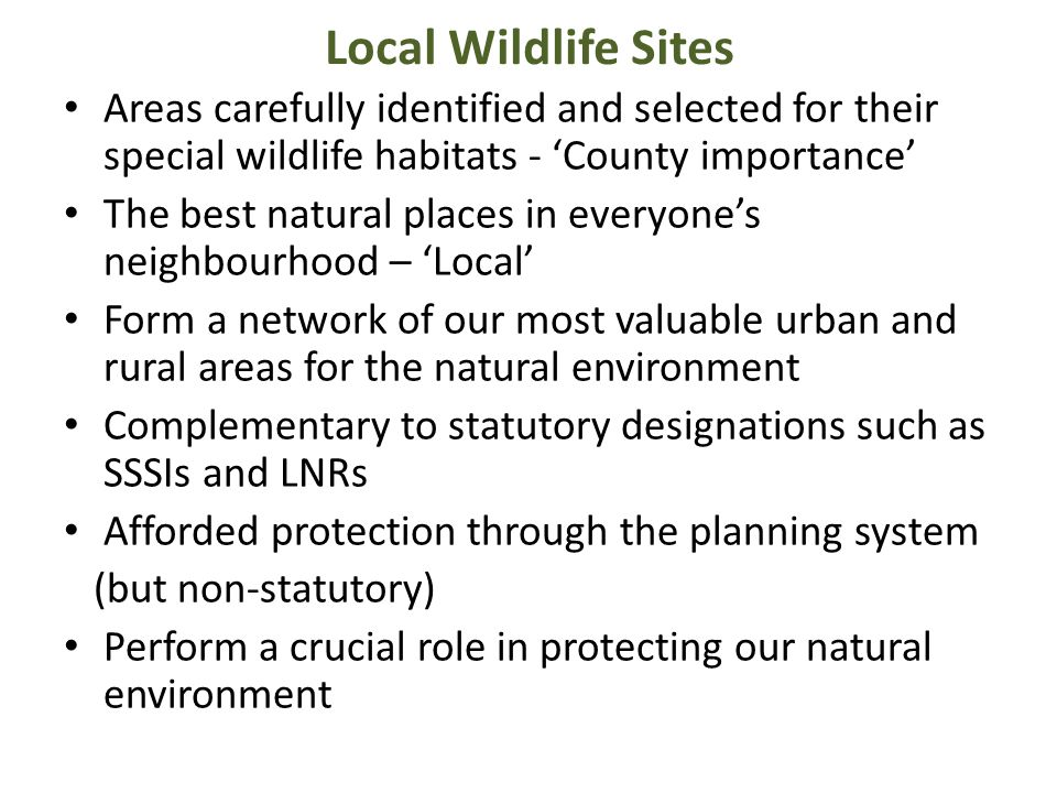 Local Wildlife Sites Areas carefully identified and selected for their special wildlife habitats - 'County importance'