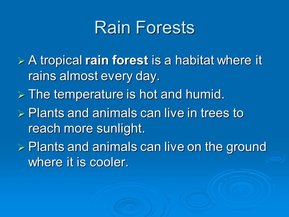 Rain Forests A tropical rain forest is a habitat where it rains almost every day. The temperature is hot and humid.