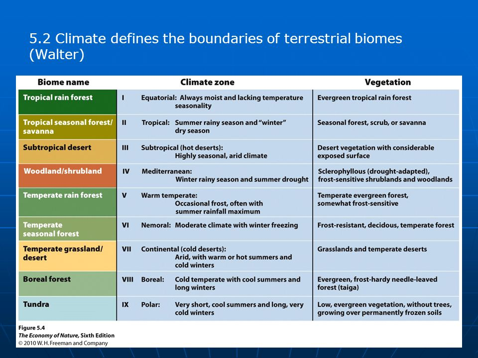 5.2 Climate defines the boundaries of terrestrial biomes (Walter)
